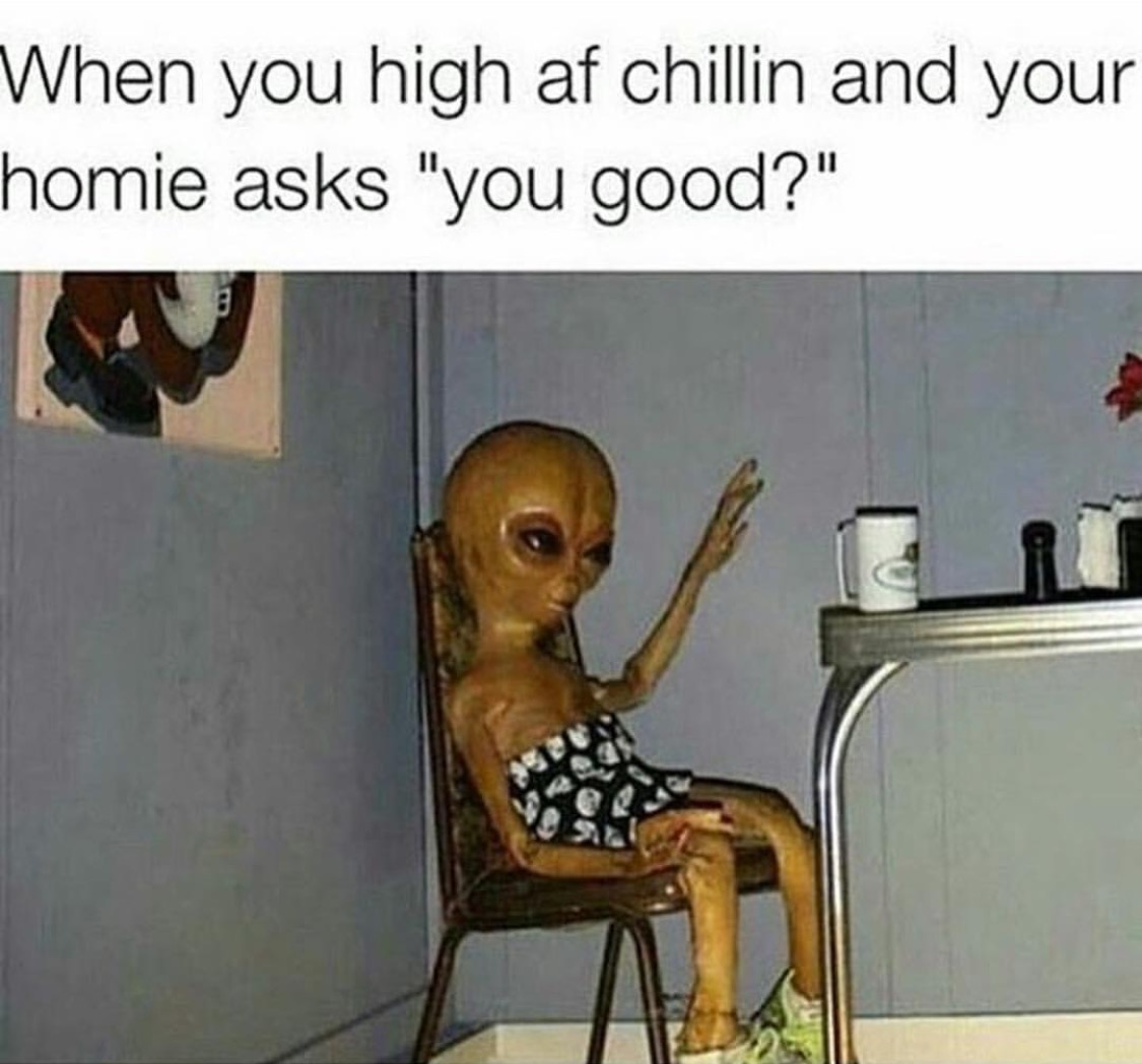 Funny Memes For When Your High : Memes that perfectly describe life when you re high af
